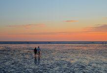 Wattenmeer Wanderung / Pixabay